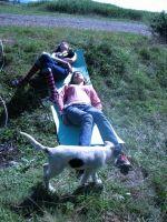 Польовий день 2008 (Фоторепортаж)
